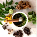 Naturopathic Education - Herb Mixture